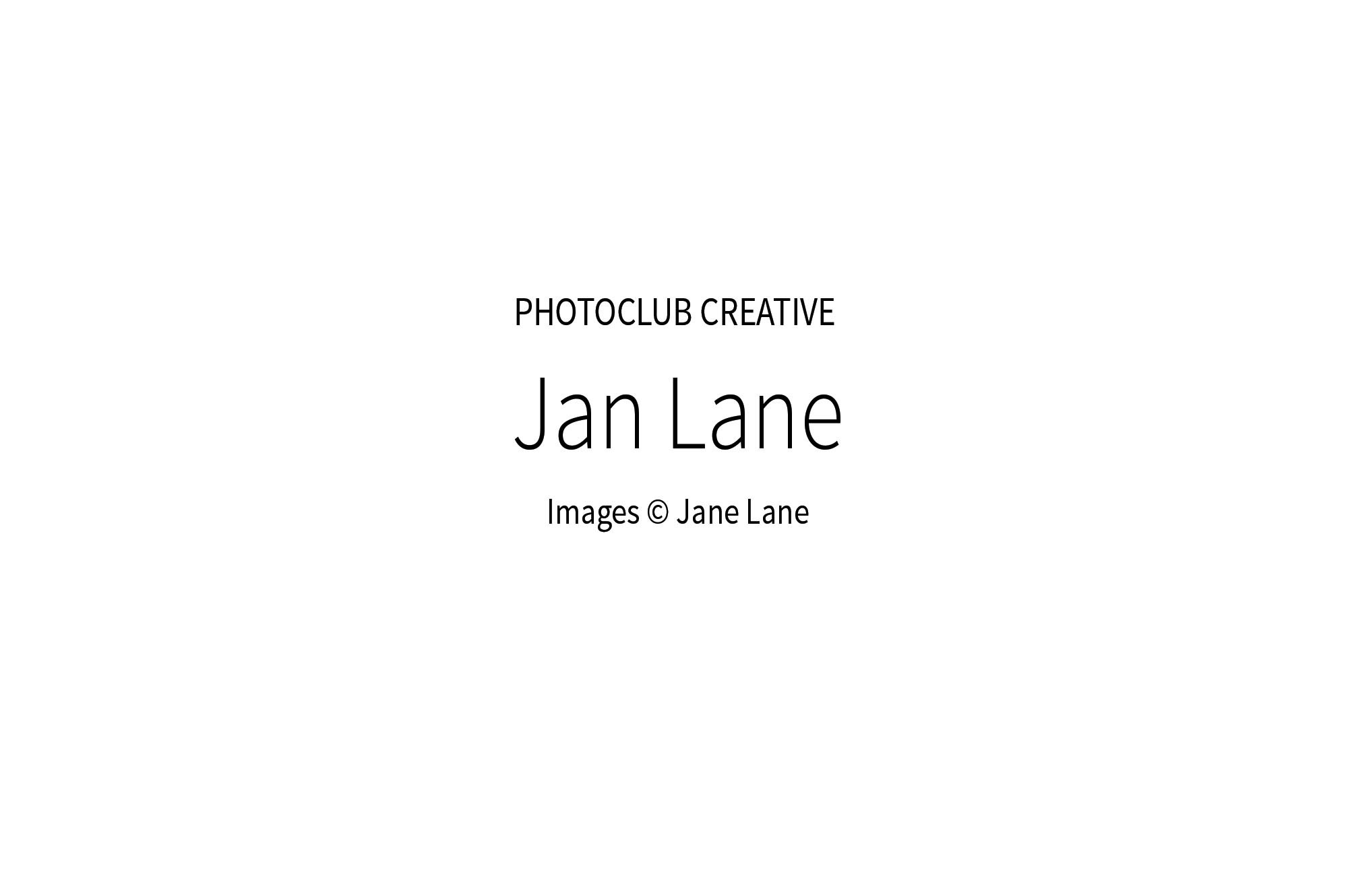 JanLane_00w.jpg