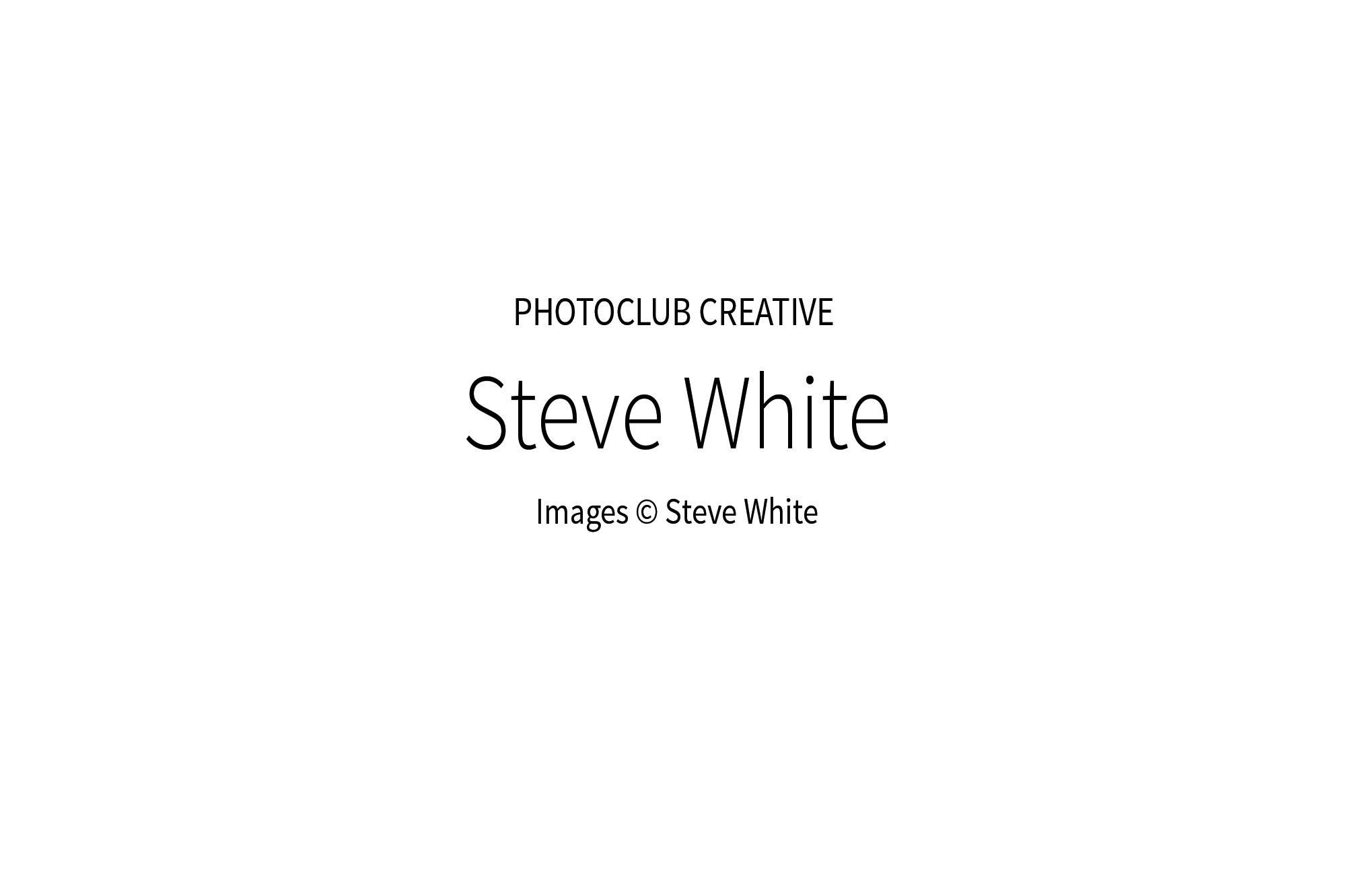 SteveWhite_00w.jpg
