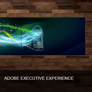 ADOBE EXECUTIVE EXPERIENCE - AMPERSAND