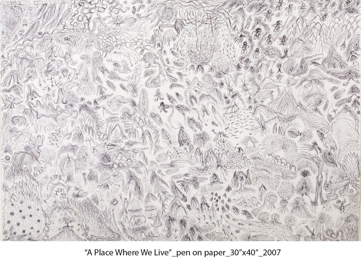 A Place Where We Live #1, 2007, ink on paper, 30%22x44%22_web.jpg