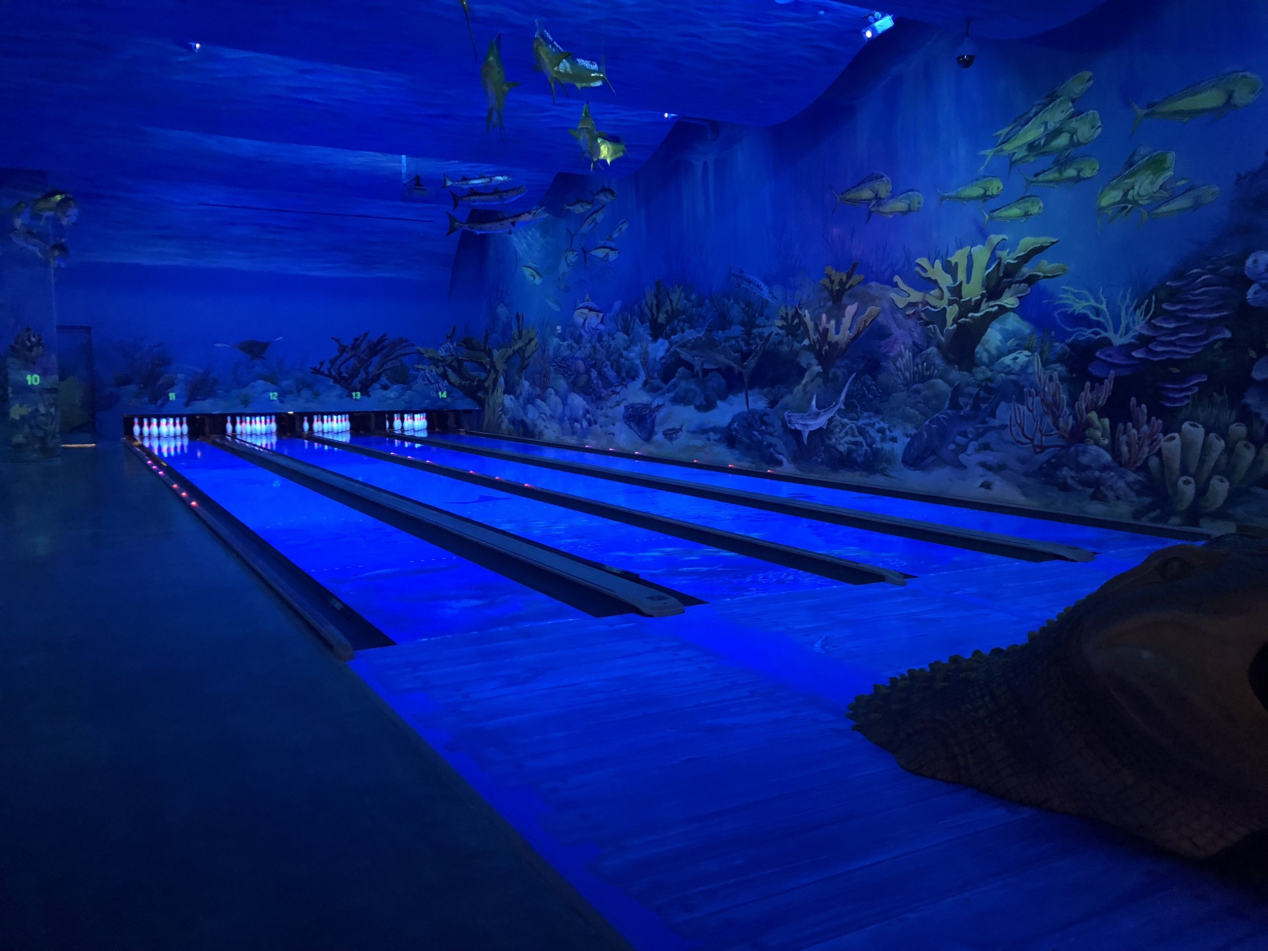 The bowling alley was underwater themed and looked really cool
