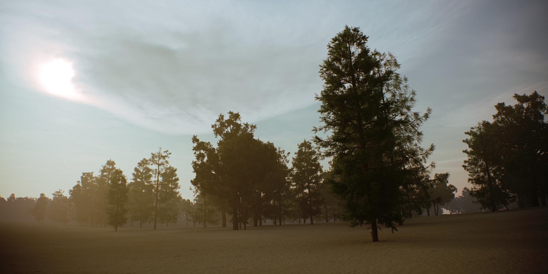 Tree Scene Alien Skies 05 Camera A.jpg