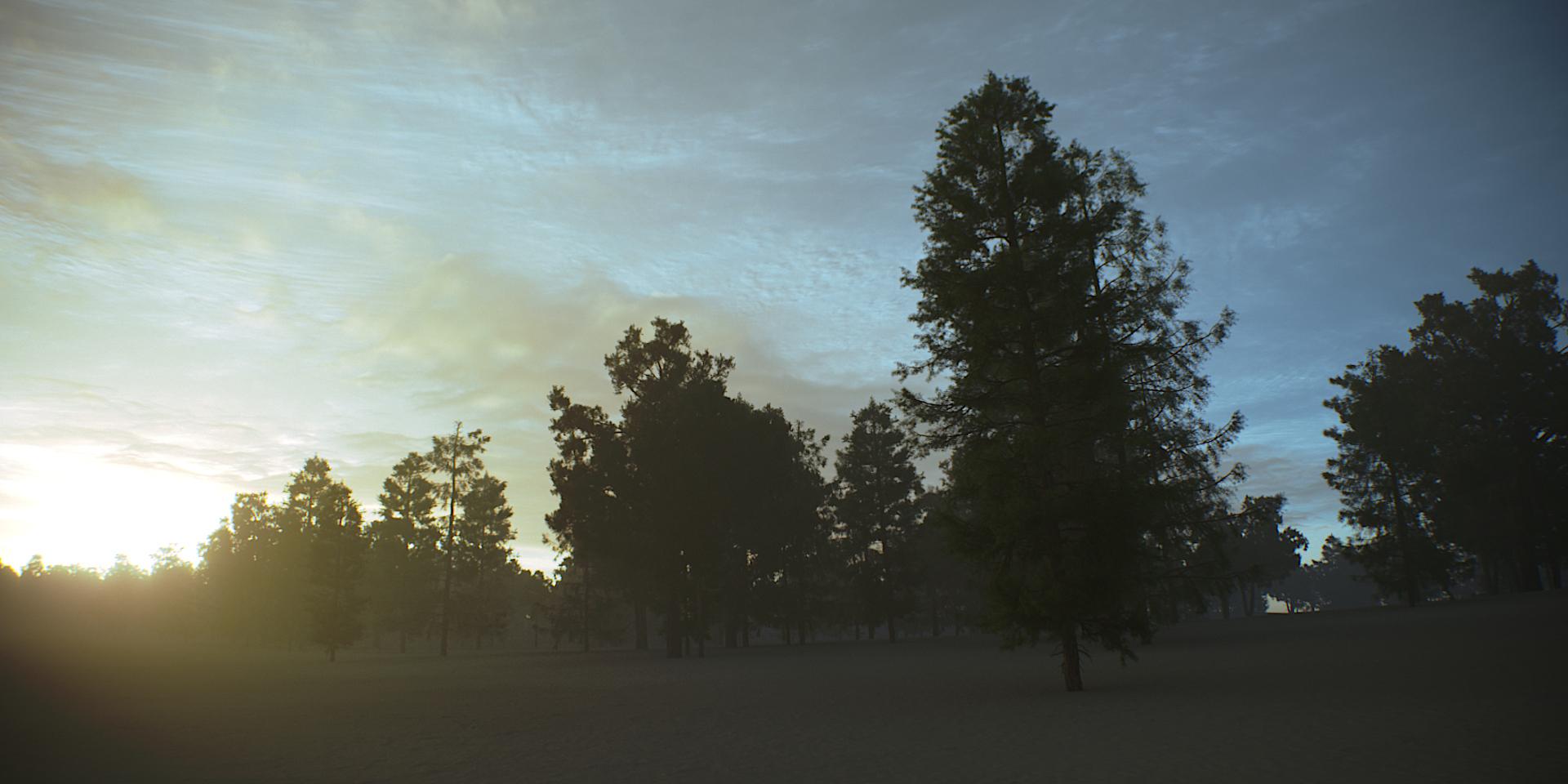 Tree Scene Alien Skies 08 Camera A.jpg