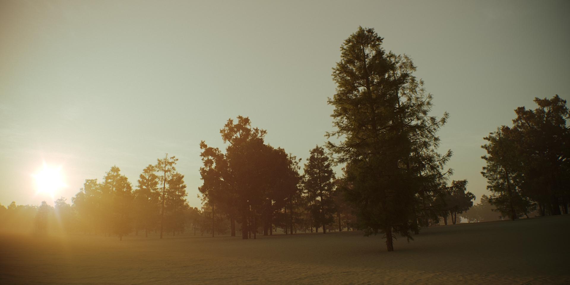 Tree Scene Alien Skies 01 Camera A.jpg