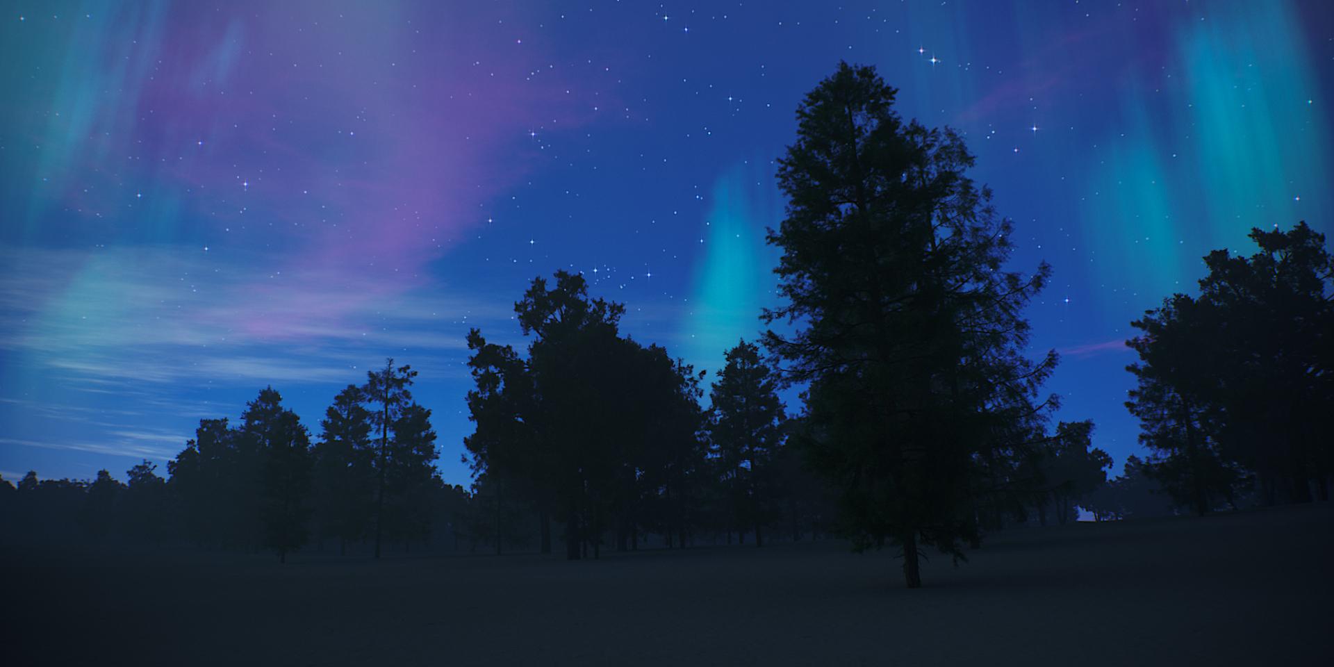 Tree Scene Alien Skies 09 Camera A.jpg
