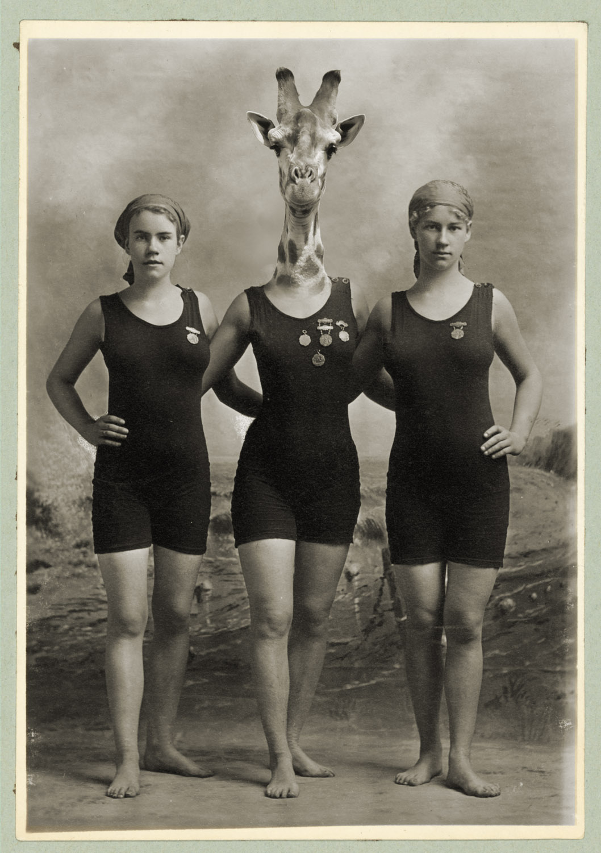 swimteamv2.jpg