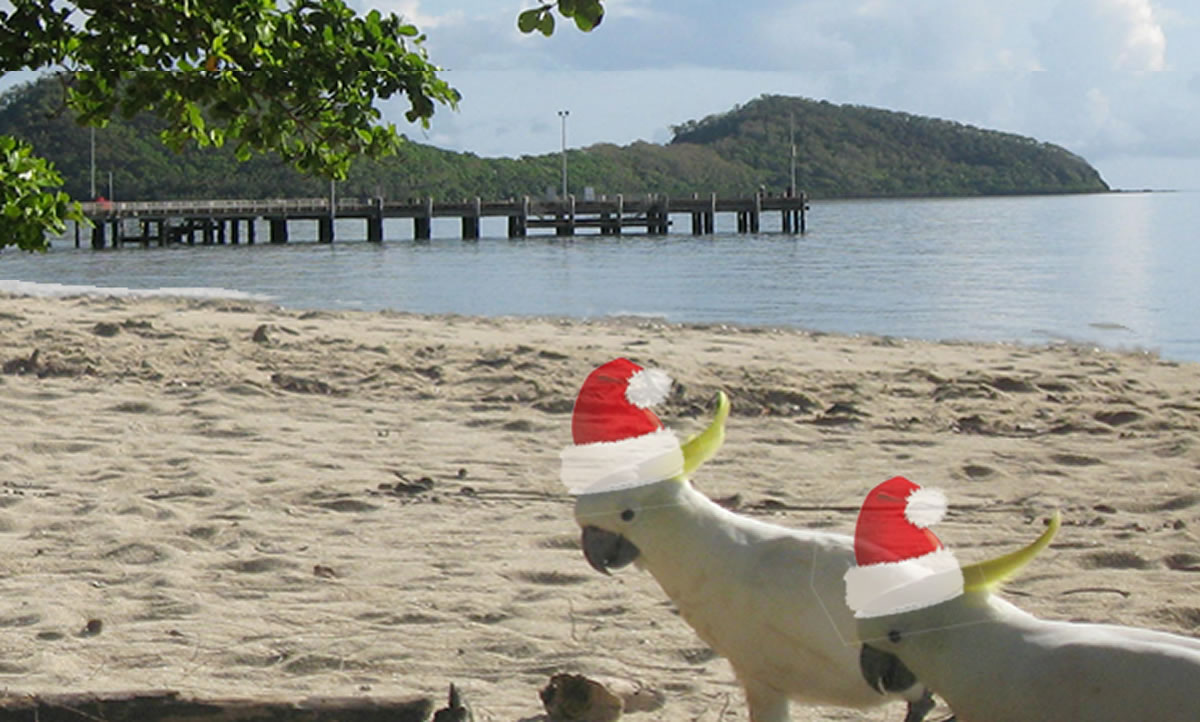 Confirm you place for your Xmas party at Beach Almond's private beach.