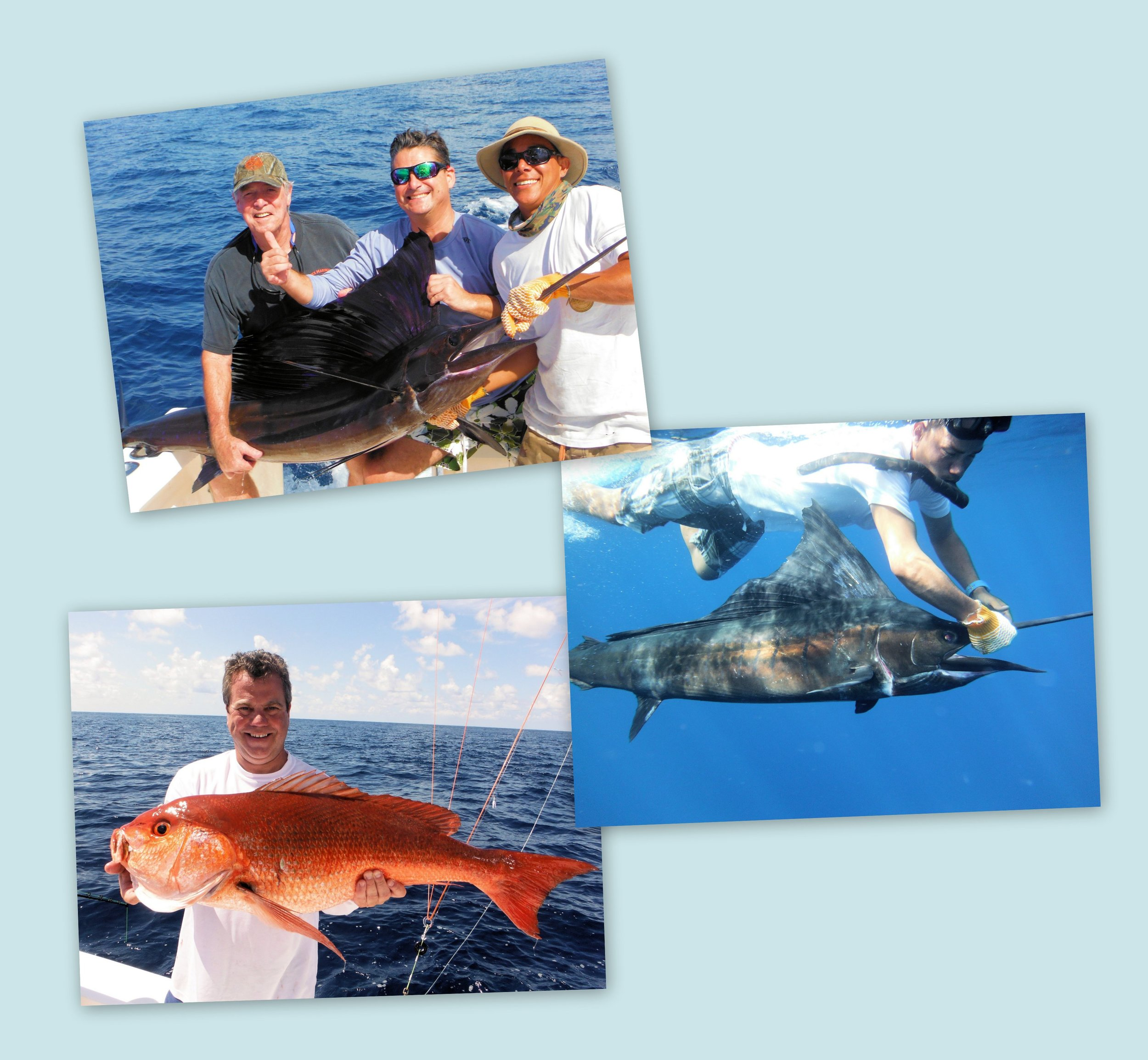 Top photo: Richard Nolan, Patrick Nolan and mate Keller - Middle Photo: captain Kelvin reviving & releasing sailfish. - Bottom Photo- Moonwalker Owner, Kenny Bertsch with35lb. snapper. January 26, 2014