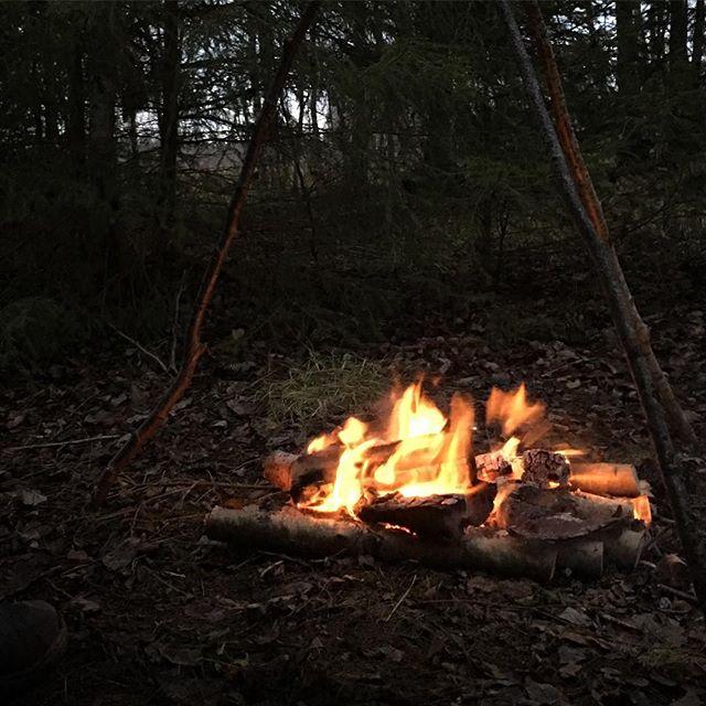 Feeling hypnotized 🌲🔥🤠 . . . . . . ---- --- -- ---- -------- #forestlife #wildernessculture #woodsman #outdoorsman #wildcamping #hiking #getoutside #wilderness #thegreatoutdoors #itsgreatoutthere  #modernoutdoorsman #bushcraft #naturelovers #offgrid #natureadventure  #forestlife #wildernessadventure #goutside #naturehiking #campingvibes #swedishnature  #nature_seekers #intothewild #bushcraftsweden #outdoorlife #friluftsliv #bushcraftsverige #wildernessculture #wintercamping #camplife2017