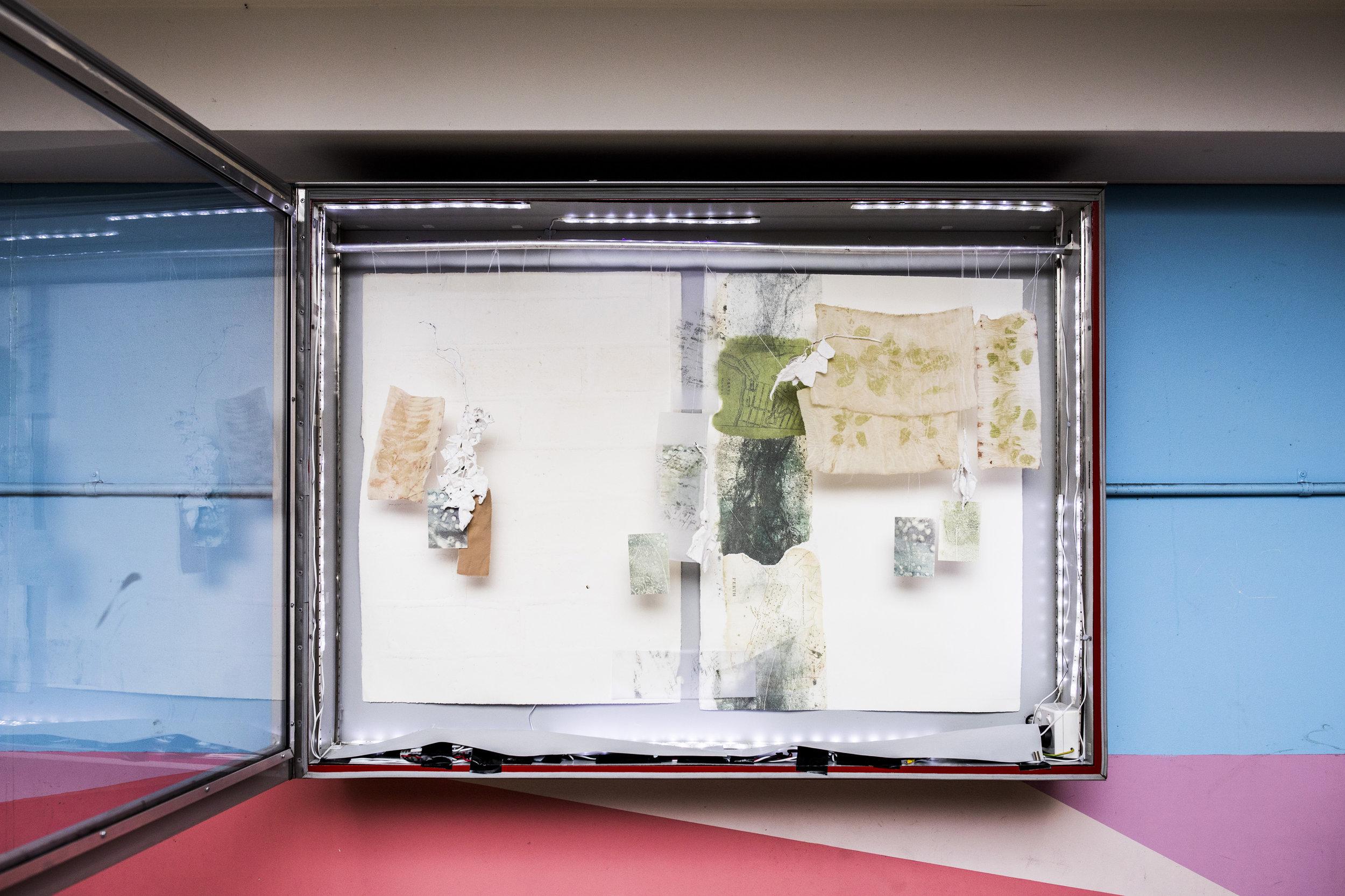 Lightbox - 0617- DZuks - 24.jpg