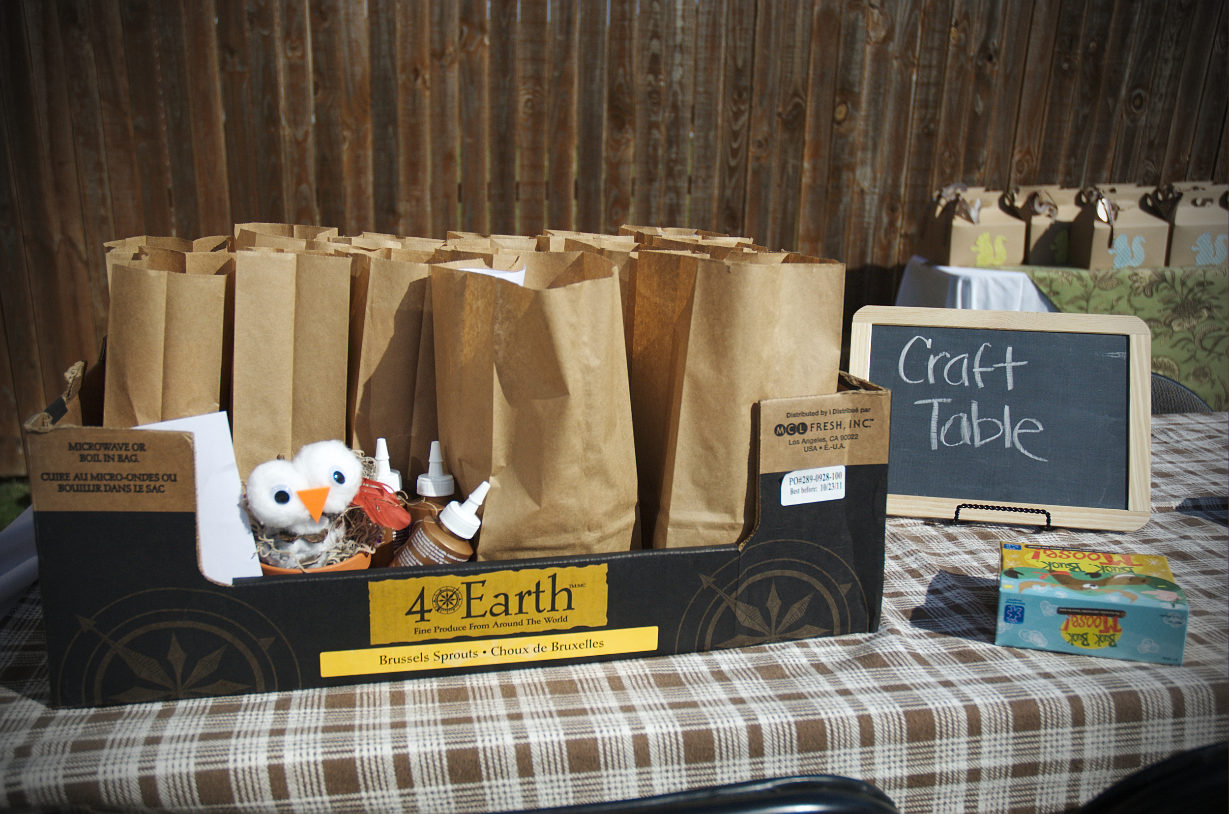 I knew with all of the activities happening at the party that many of the kids might not have time to actually sit down and make the entire project.  I packaged each project into a paper bag and each contained its own set of instructions so they could assemble them at home!
