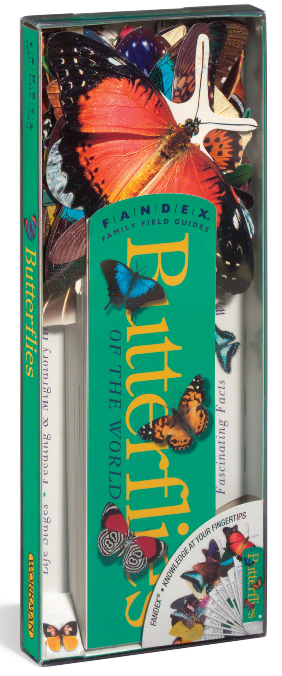 FANDEX Butterflies