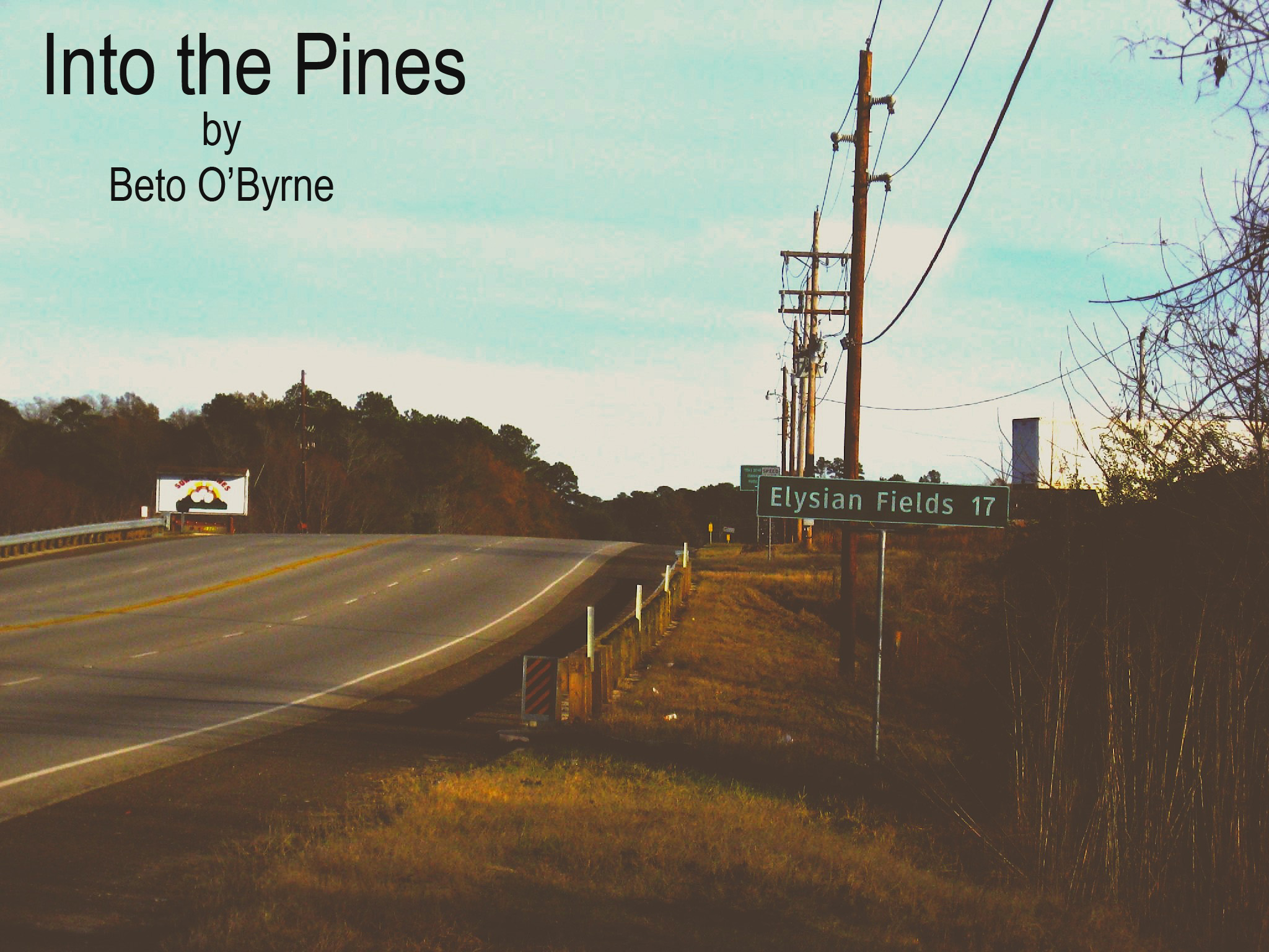 Into the Pines