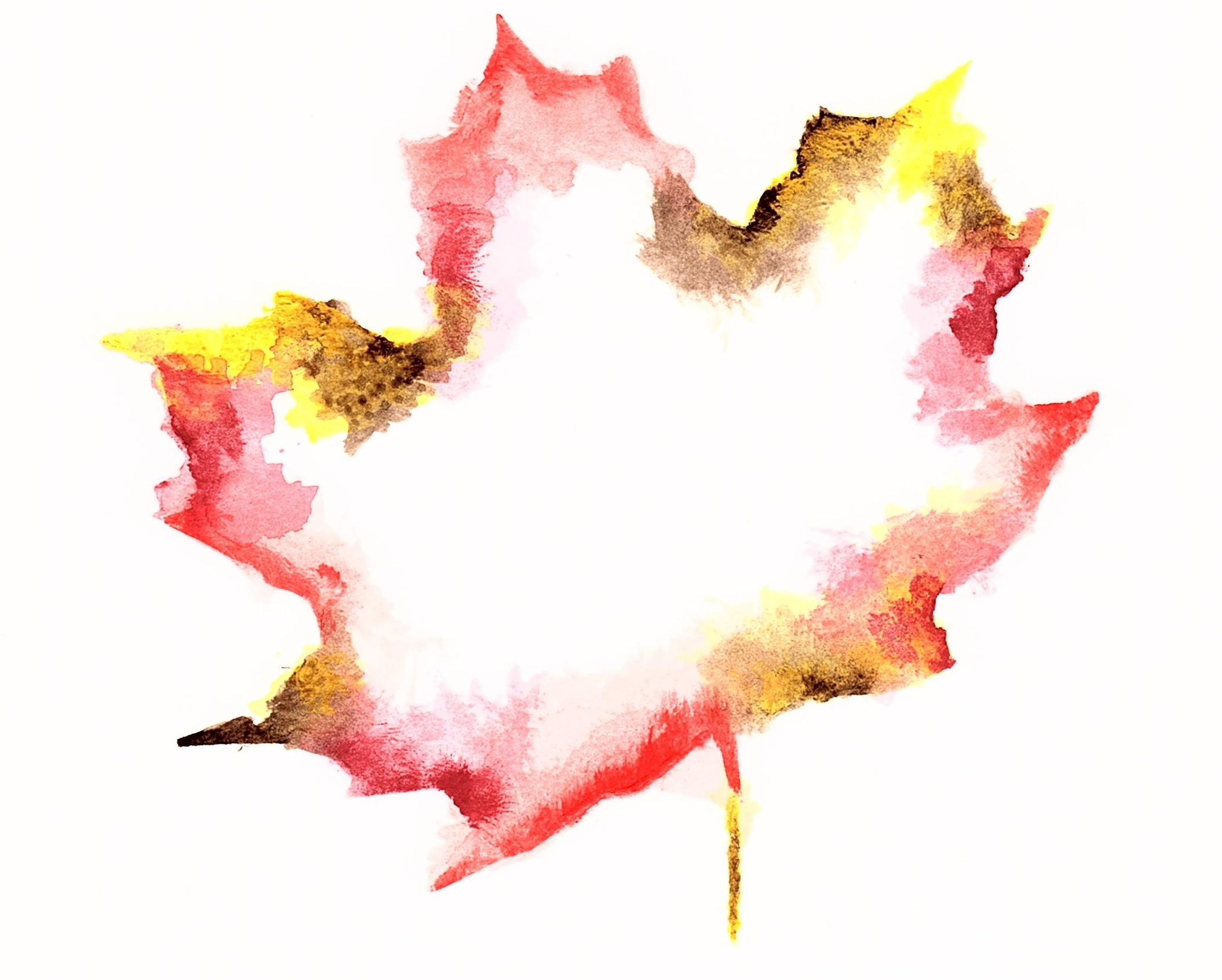 McKell's Leaf.jpg