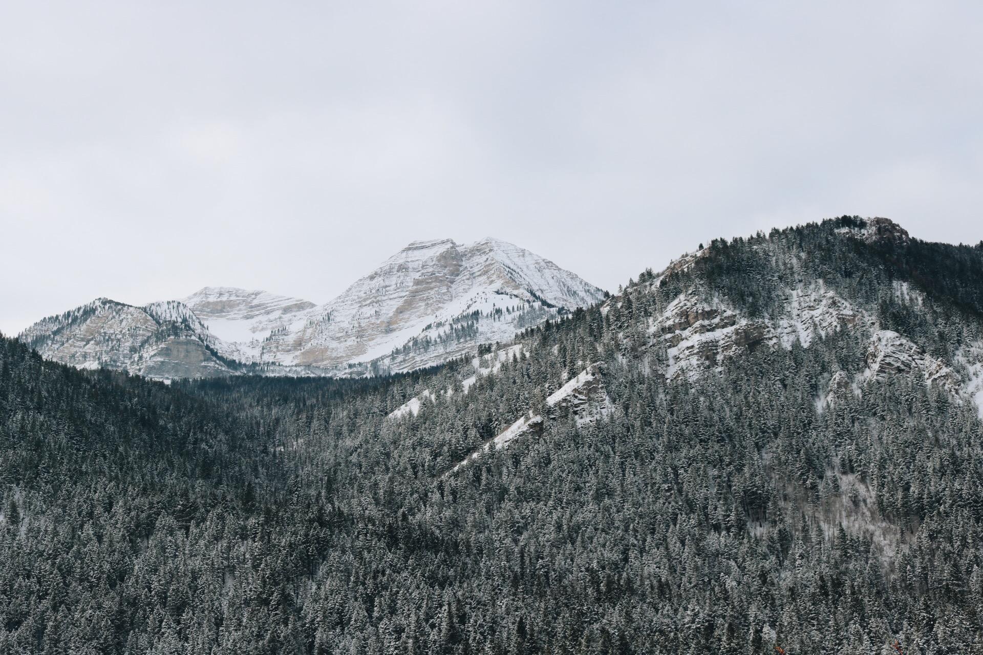 canyon pic.JPG