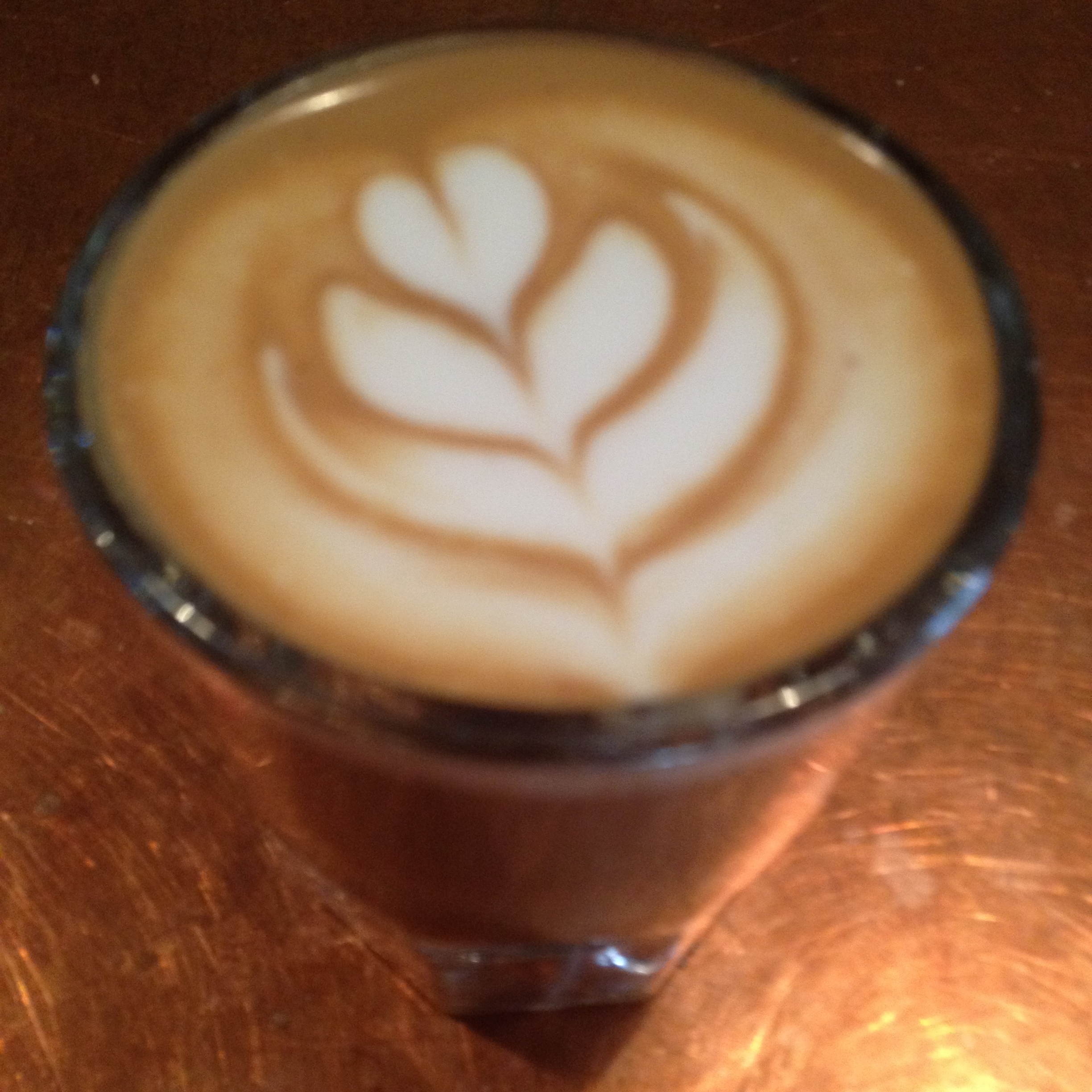 Contemplating beans over a Cortado at the  Hungry Ghost in Brooklyn