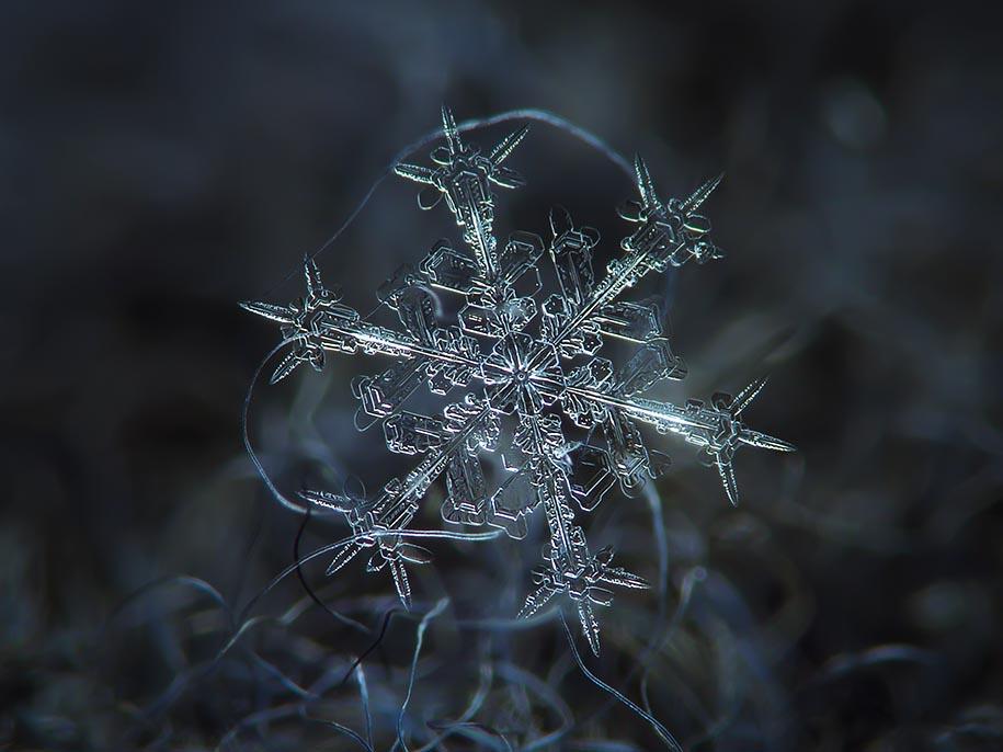 snowflake-closeup-diy-setup-alexey-kljatov-2.jpg