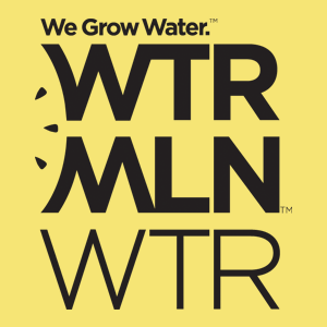 wtrmln-logoKG.png