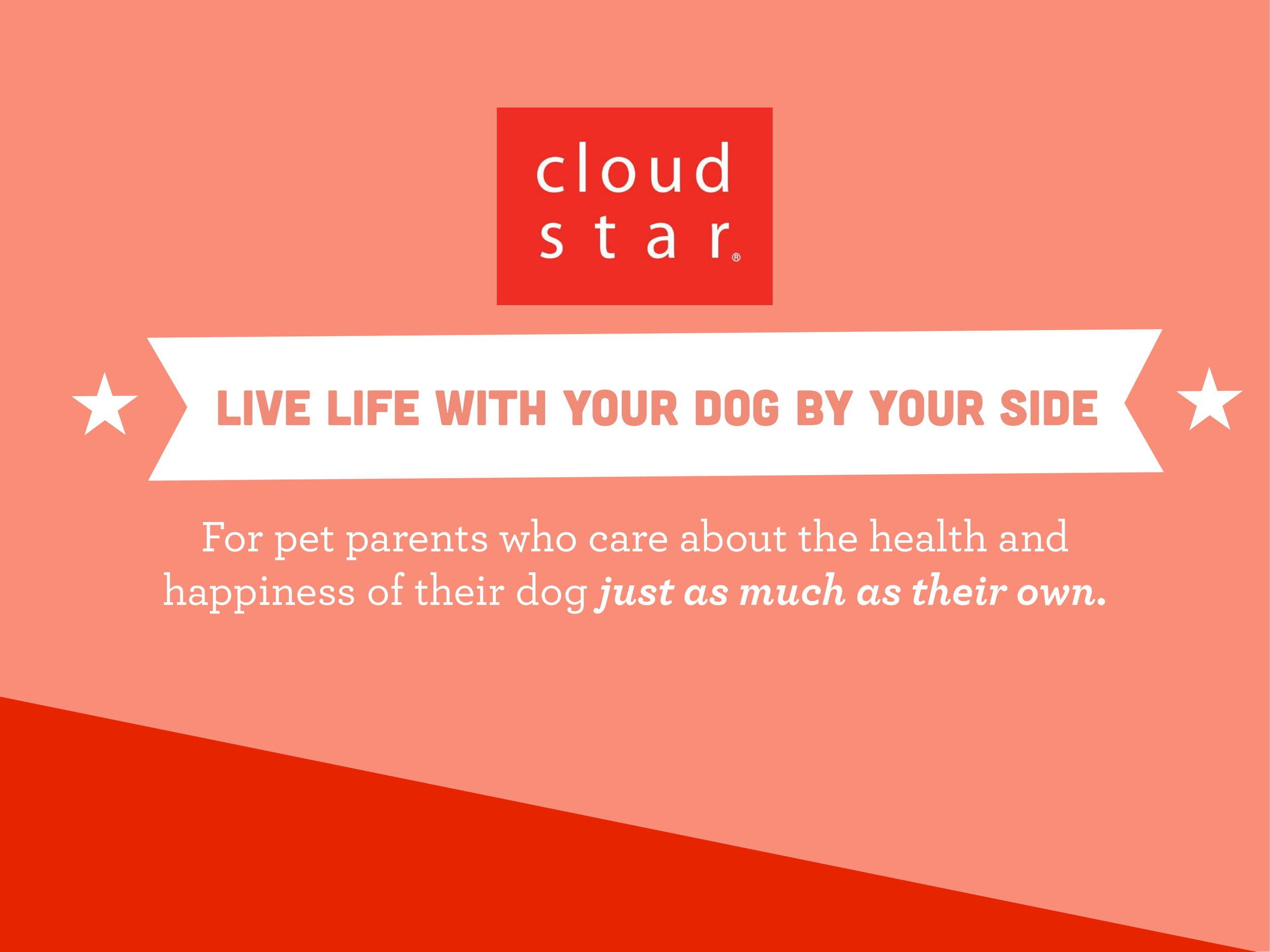 Cloud Star Influencer Deck.compressed-02.jpg