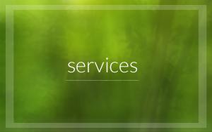 services3'_thumb_edited-3.jpg