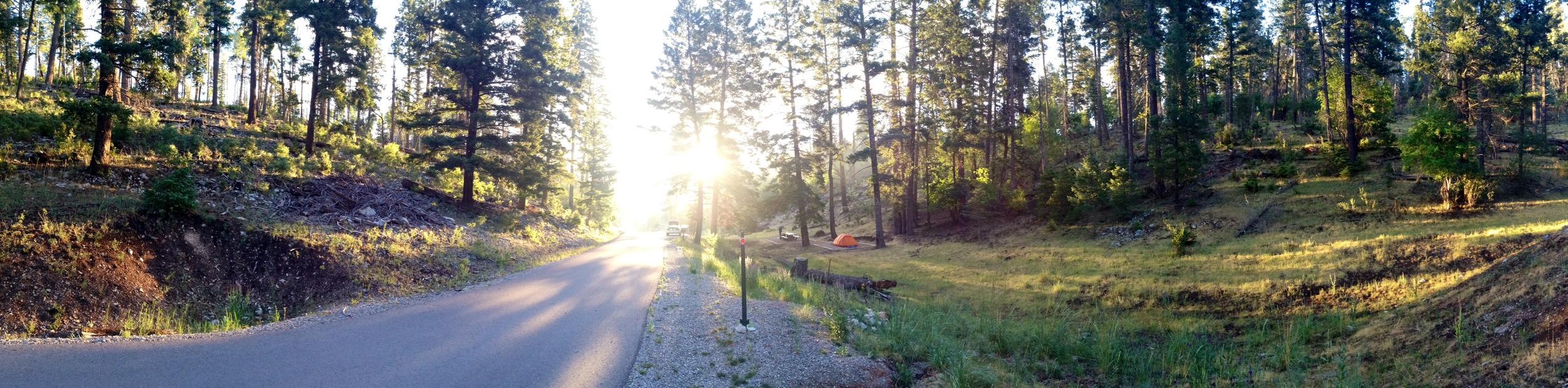 Road toward the campground at dawn