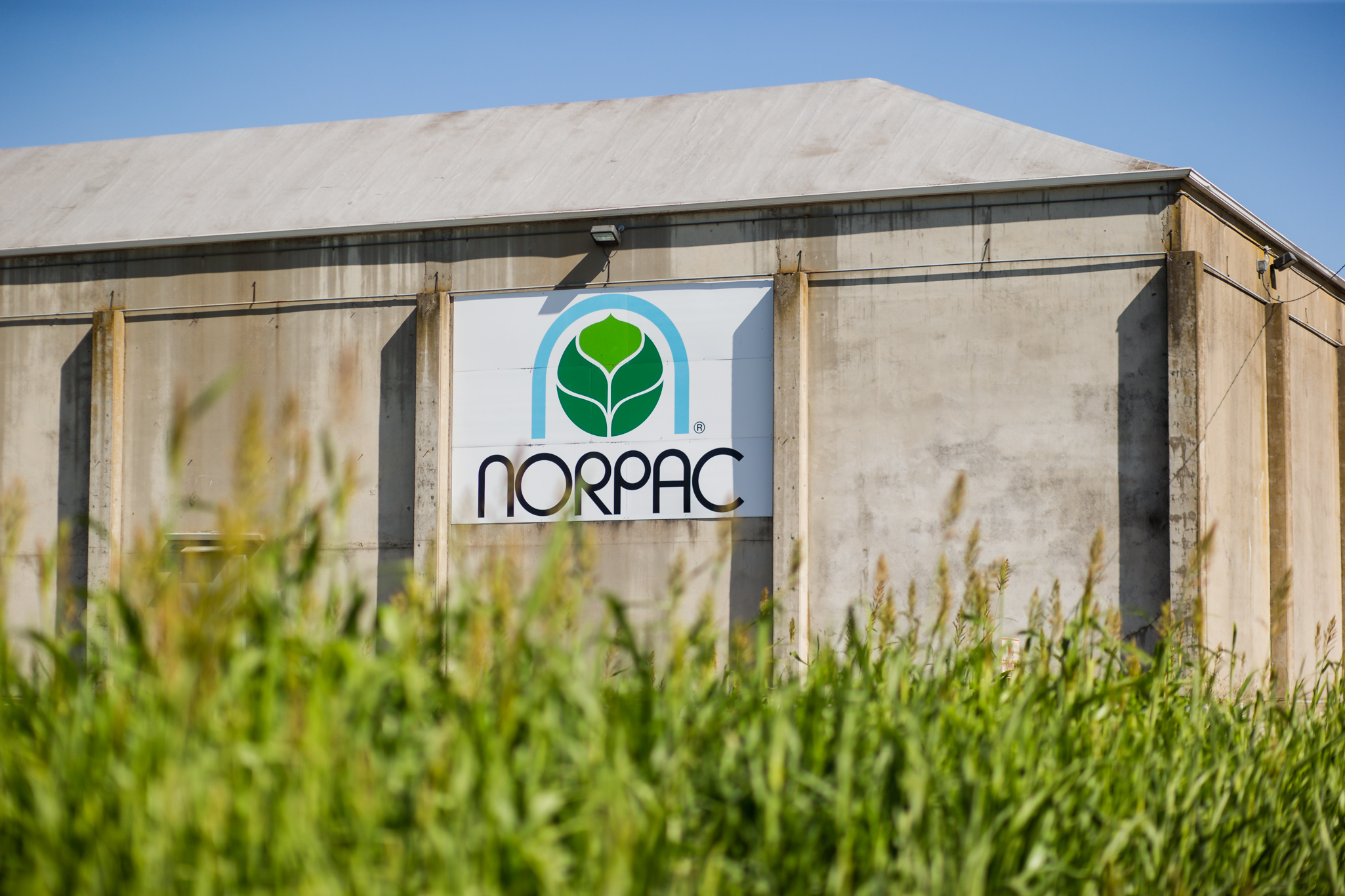 Agriculture photography,  corporate photography, industrial photography, portrait Photographer, farm photography, farmers, growers, NORPAC Foods, sustainability, Portland Editorial Photographer, Portland Magazine Photographer, editorial photography, magazine photography, Portland People Photographer, nashco photo and video, Nashco, www.nashcophoto.com, crafted reality, photojournalism, photojournalist