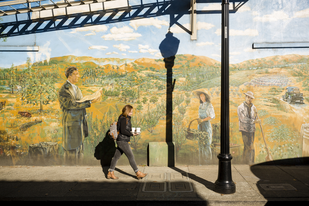 The Plaza Street mural in downtown Healdsburg, CA shows the town's agricultural heritage, with an overalls-clad girl holding a basket of olive branches, and an old farm truck filled with oak wine barrels driving away in the distance. The town is a synthesis of old and new—of small-town friendliness and big city boutiques, Michelin-starred eateries and, of course, very good wine. Located in the heart of Sonoma, the 1768-square mile county is chocked full of wineries, dairies, micro-distilleries, bakeries, restaurants, gardens, and orchards and is quickly becoming known as the food-iest place on earth. Pictured taken November 6th, 2015.
