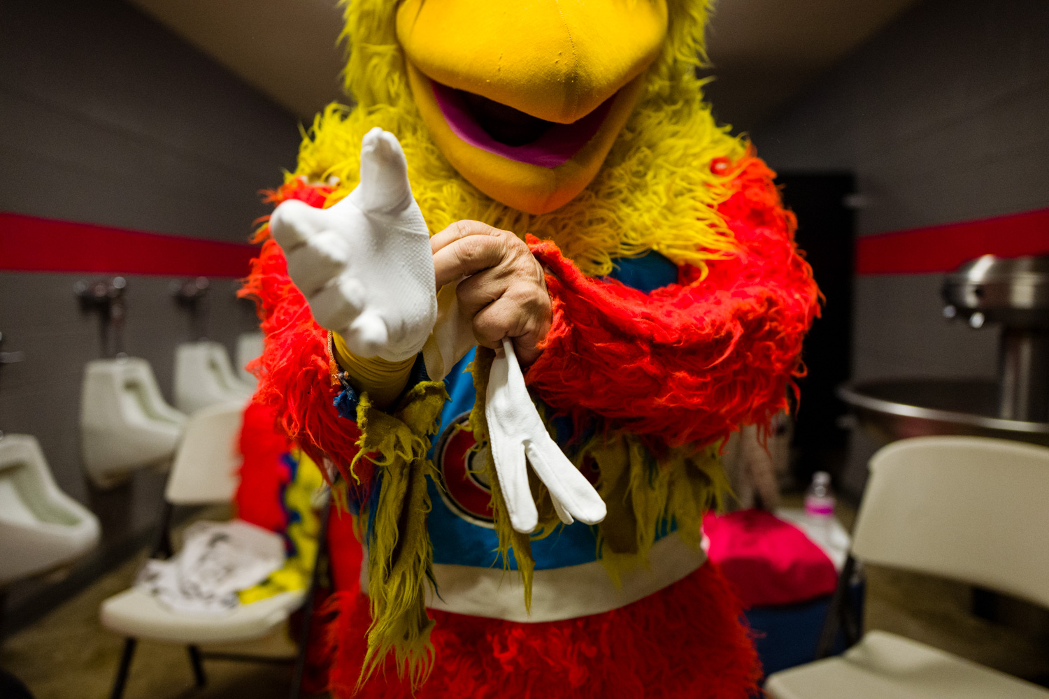 Riding the Laughter Into Another Sunset, The San Diego Chicken,  The New York Times