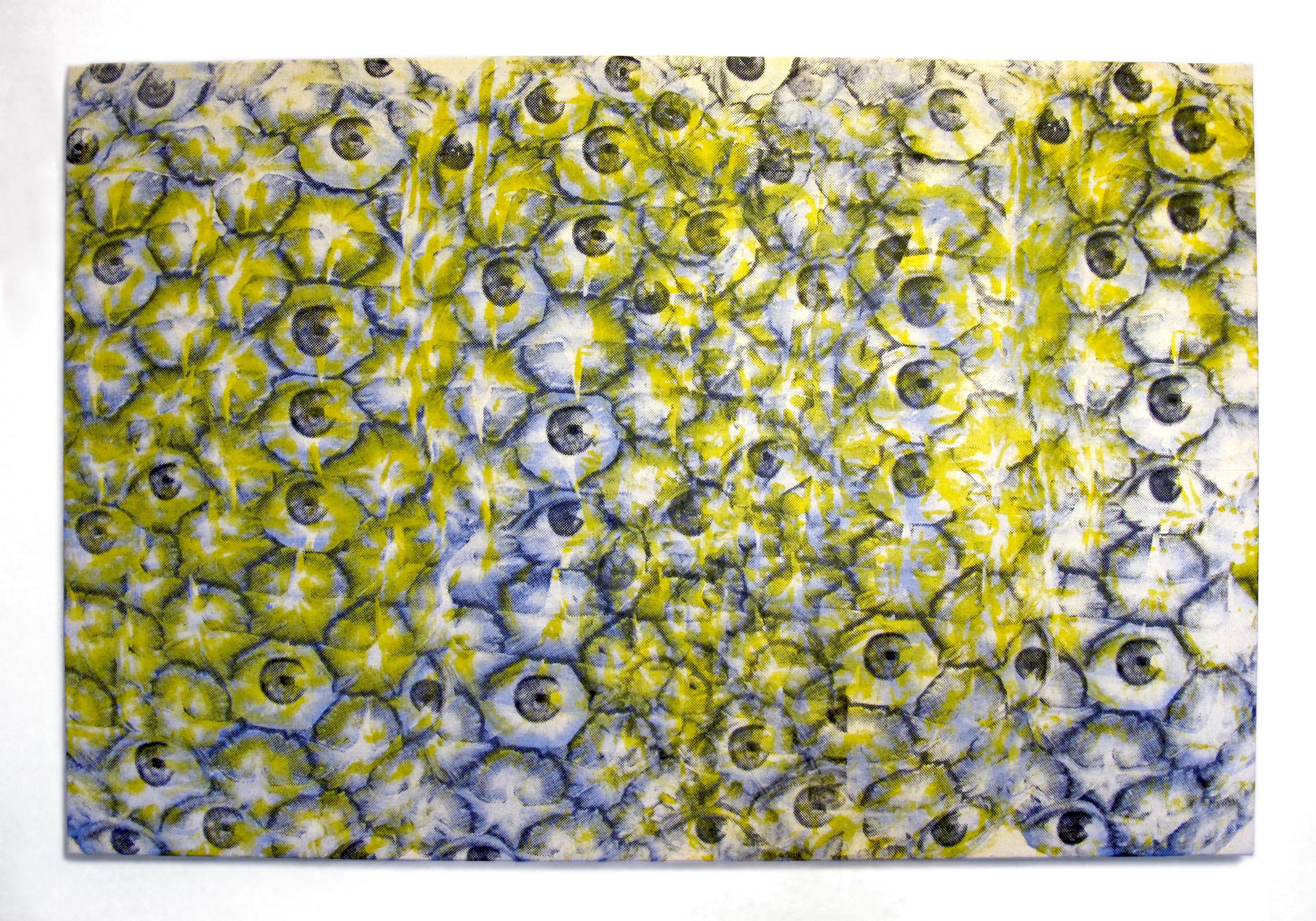 """Pina Eyes , 2014.Silkscreen on muslin, 24"""" x 36"""""""