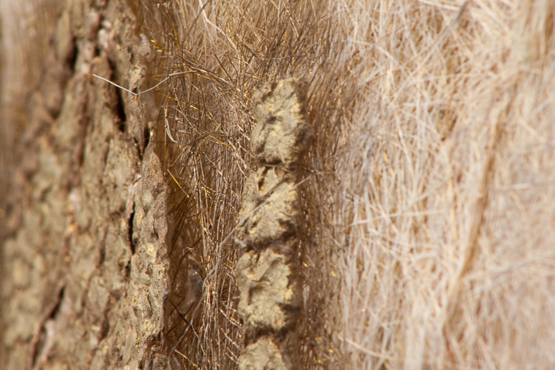 After Maria Clara's Piña Fiber Sleeve ,Detail (Photo:Mido Lee)