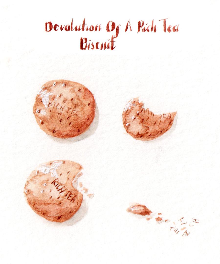 devolution-of-a-rich-tea551_1500