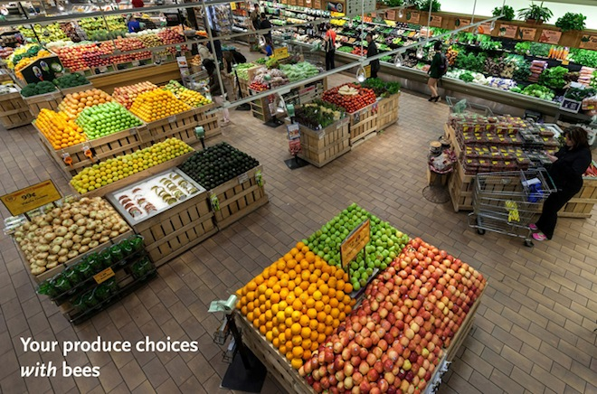 WHOLE FOODS MARKET PRODUCE DEPARTMENT