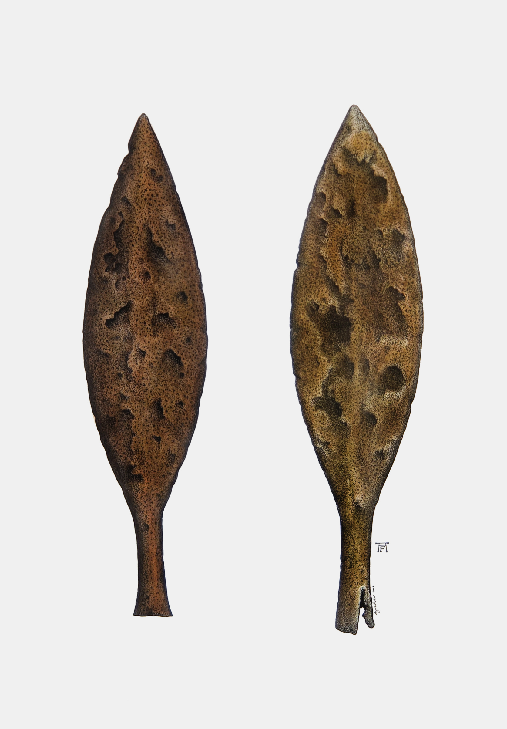 'Iron Spearheads (Dory)'