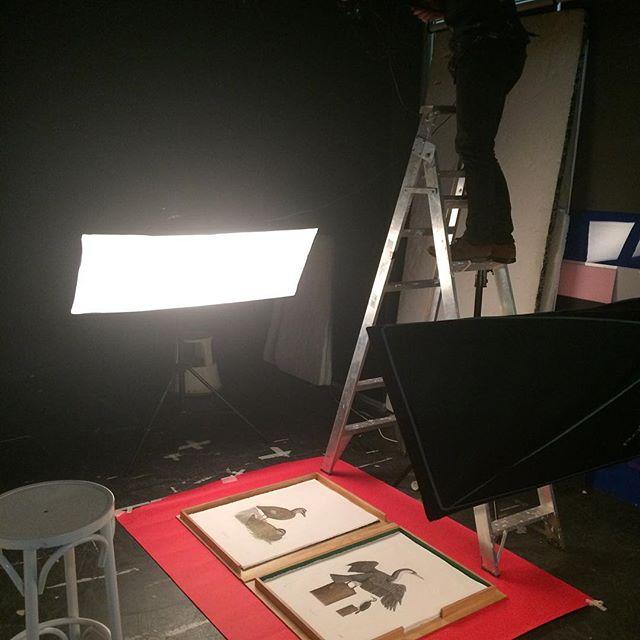 Getting some pro photos of my 'Birds of Sydney' folio in the studio with @ry.stuart. #birdsofsydney #etching #folio #intaglio #printmaking #photo