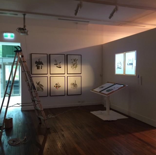 Setting up my work for The National Art School's 2017 Postgraduate Exhibition - opening next Thursday 2nd November 6-10pm. I'll be presenting my 'Birds of New Holland' folio which I've been working on for the past two years. After the opening night, the gallery exhibition and artist studios remain open for public visit until 10th November. Everybody welcome! #nas #nationalartschool #postgrad #postgraduate #exhibition #artexhibition #sydney #sydneyart #art #fineart #gallery