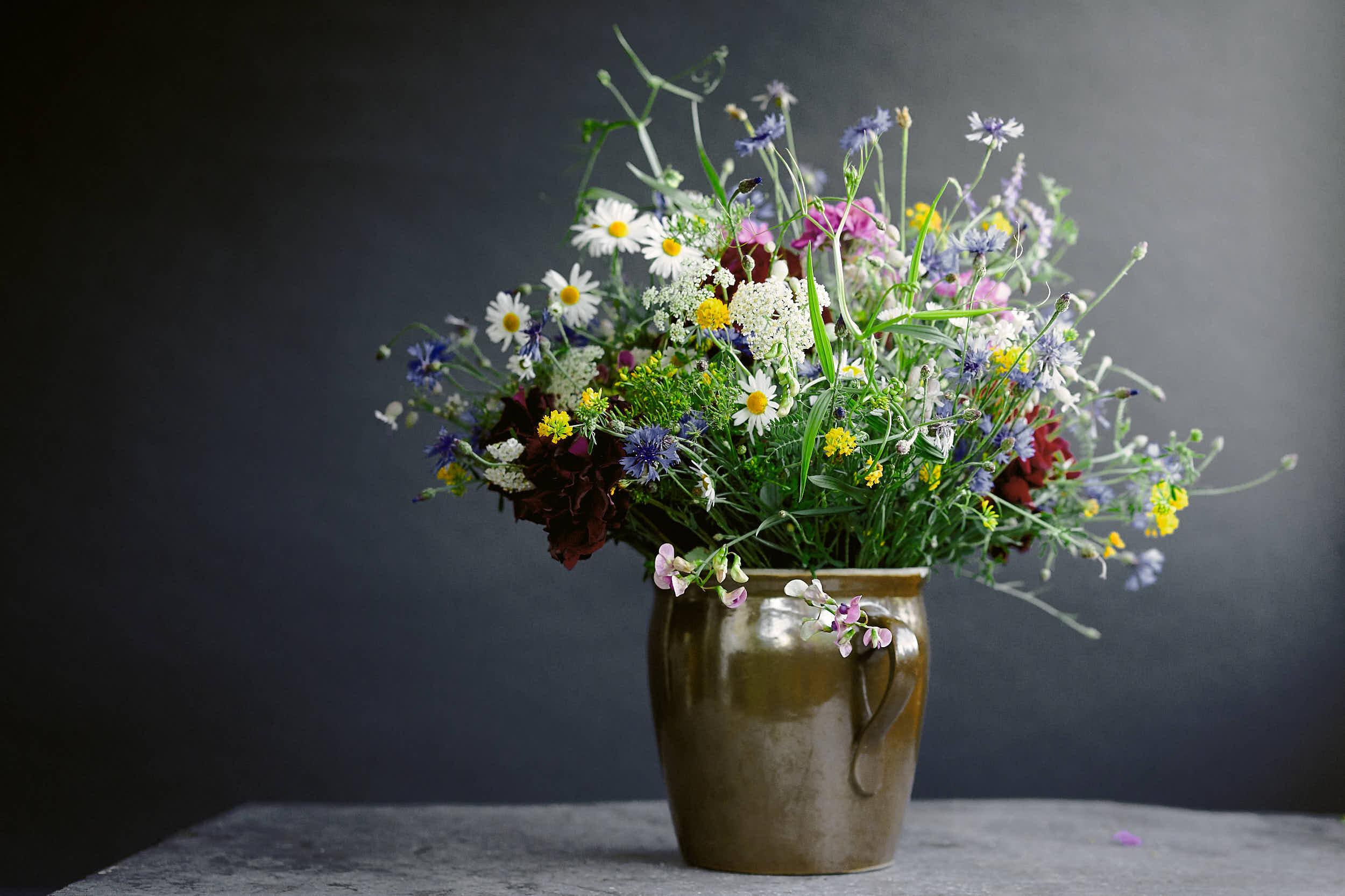 Blumen-2500-.jpg