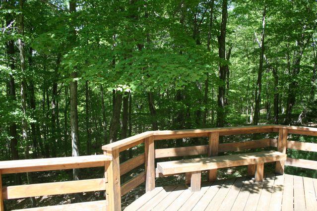 Woodlands026.jpg