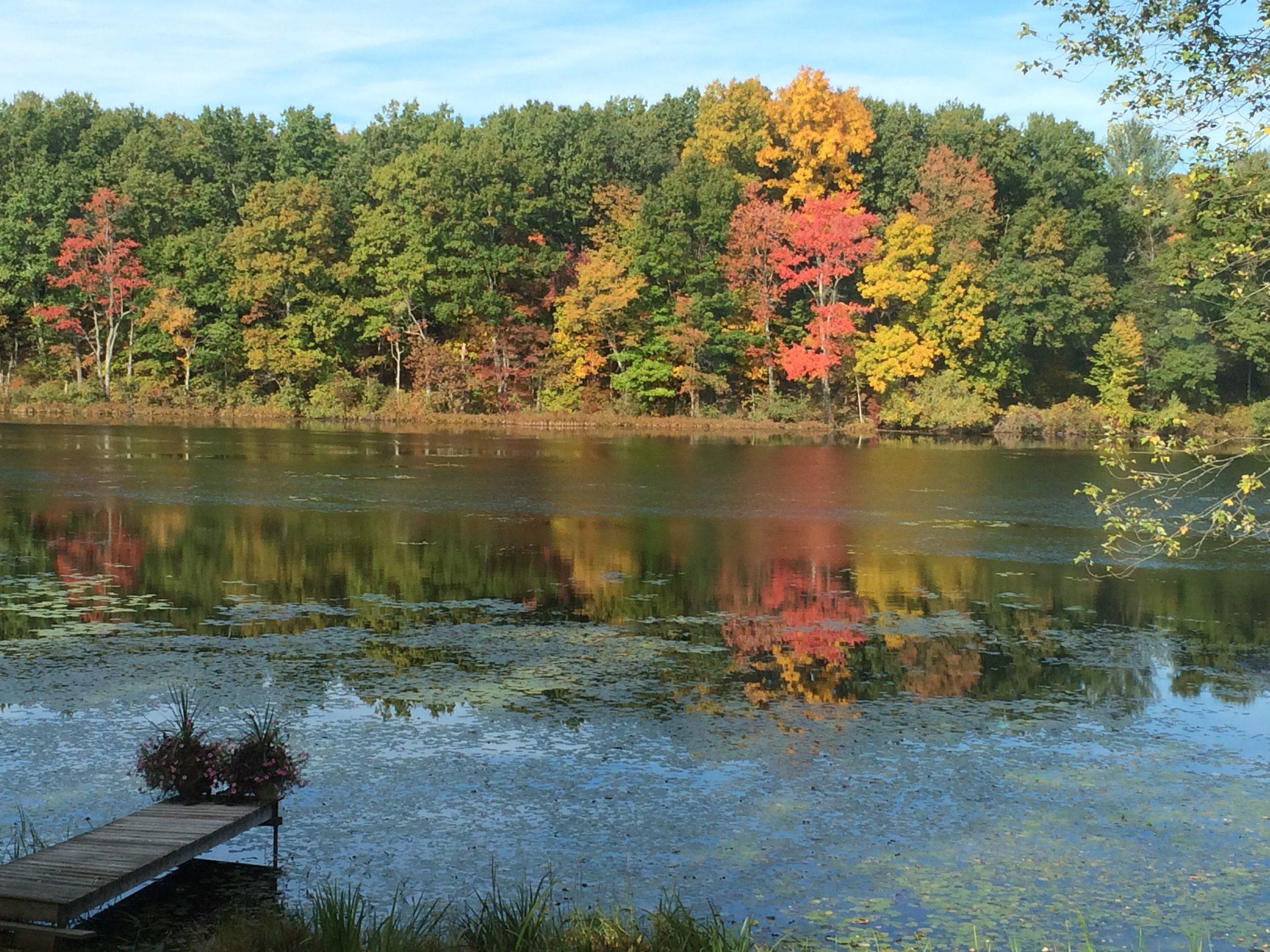 lake fall 2.JPG