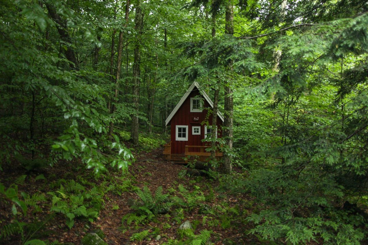 Woodlands-3.jpg