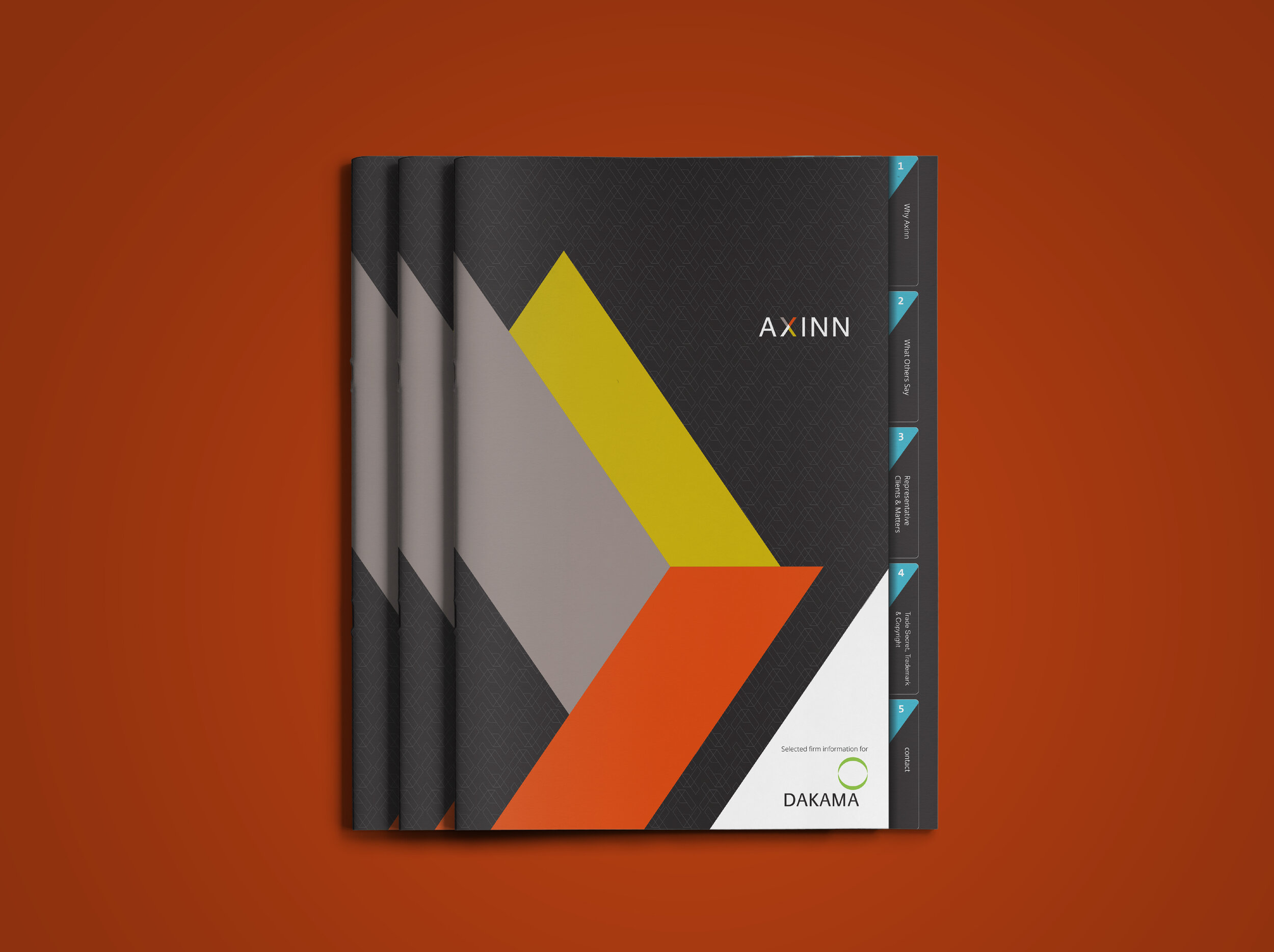 axinn front cover 2.jpg