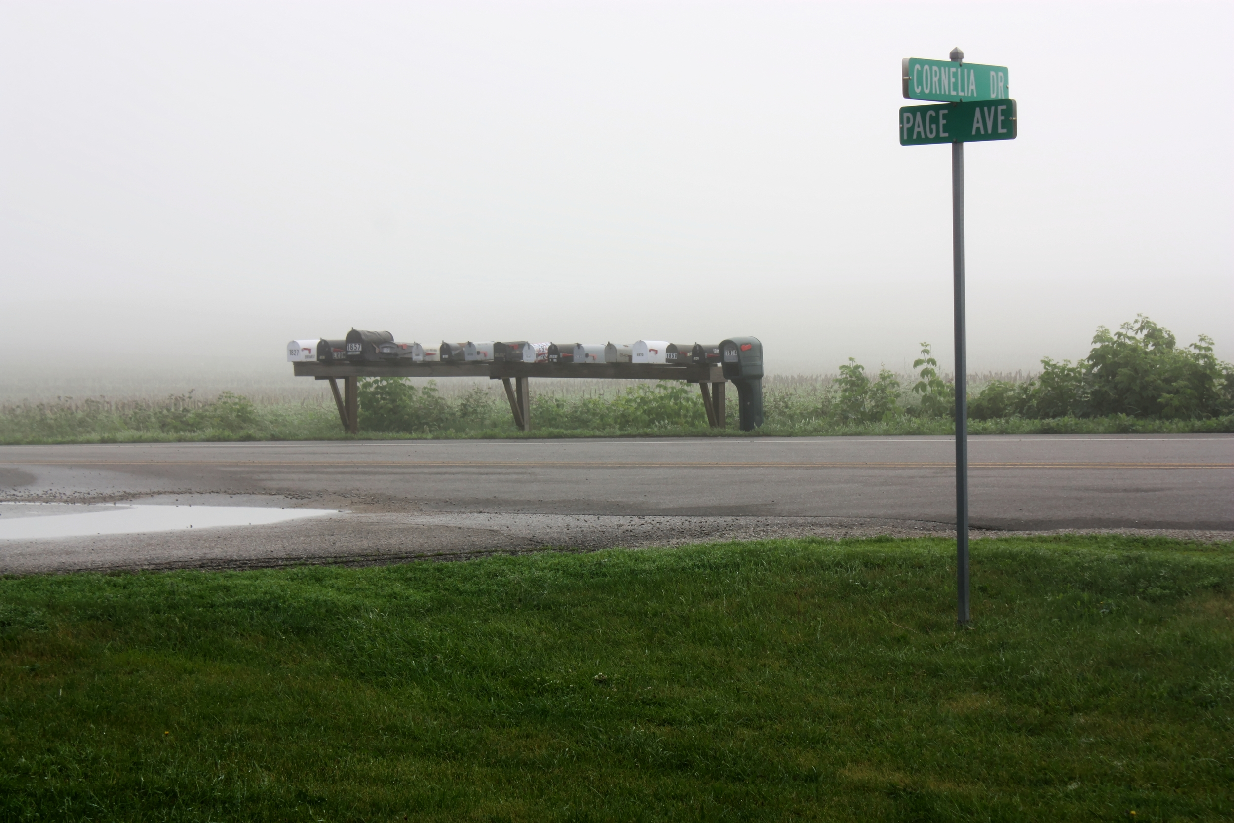 foggy cornelia dri with mailbox_tonemapped.jpg