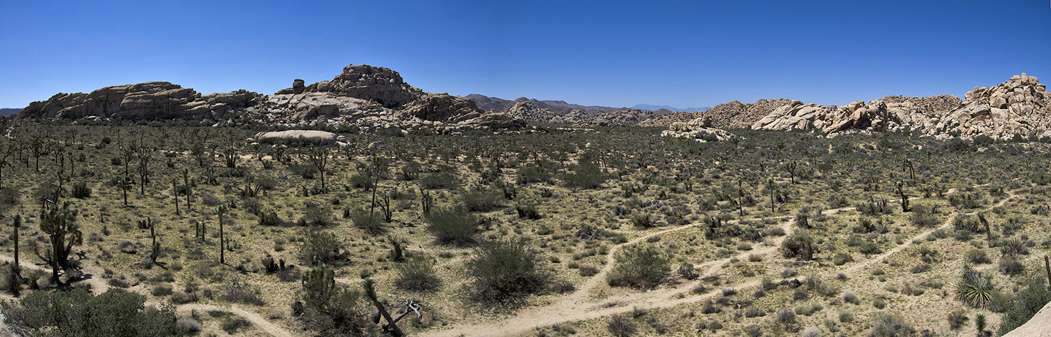 A panorama from atop a large rock.