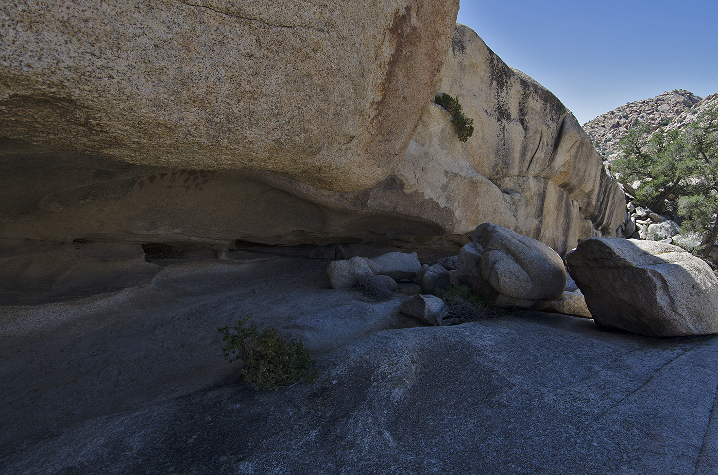 A view of the shelter. The rock ledge is fairly wide and could hold a lot of people.