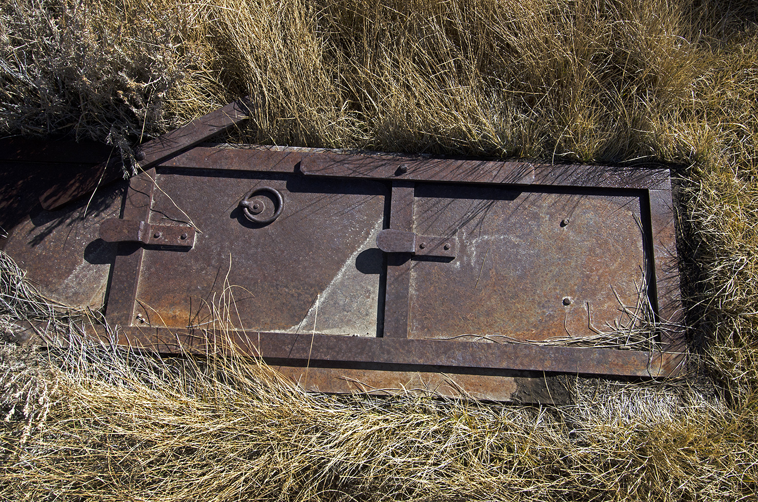 Who knows what building this old iron door came from. They were used to help prevent the spread of fire more than to protect against burglary.