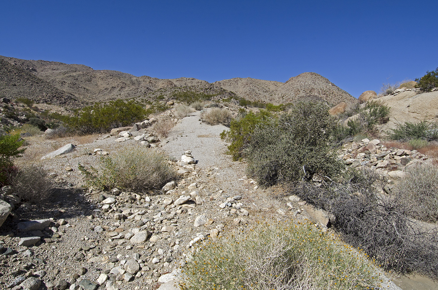 After crossing the wash, the road begins to climb once again. N34.06736 W116.04536