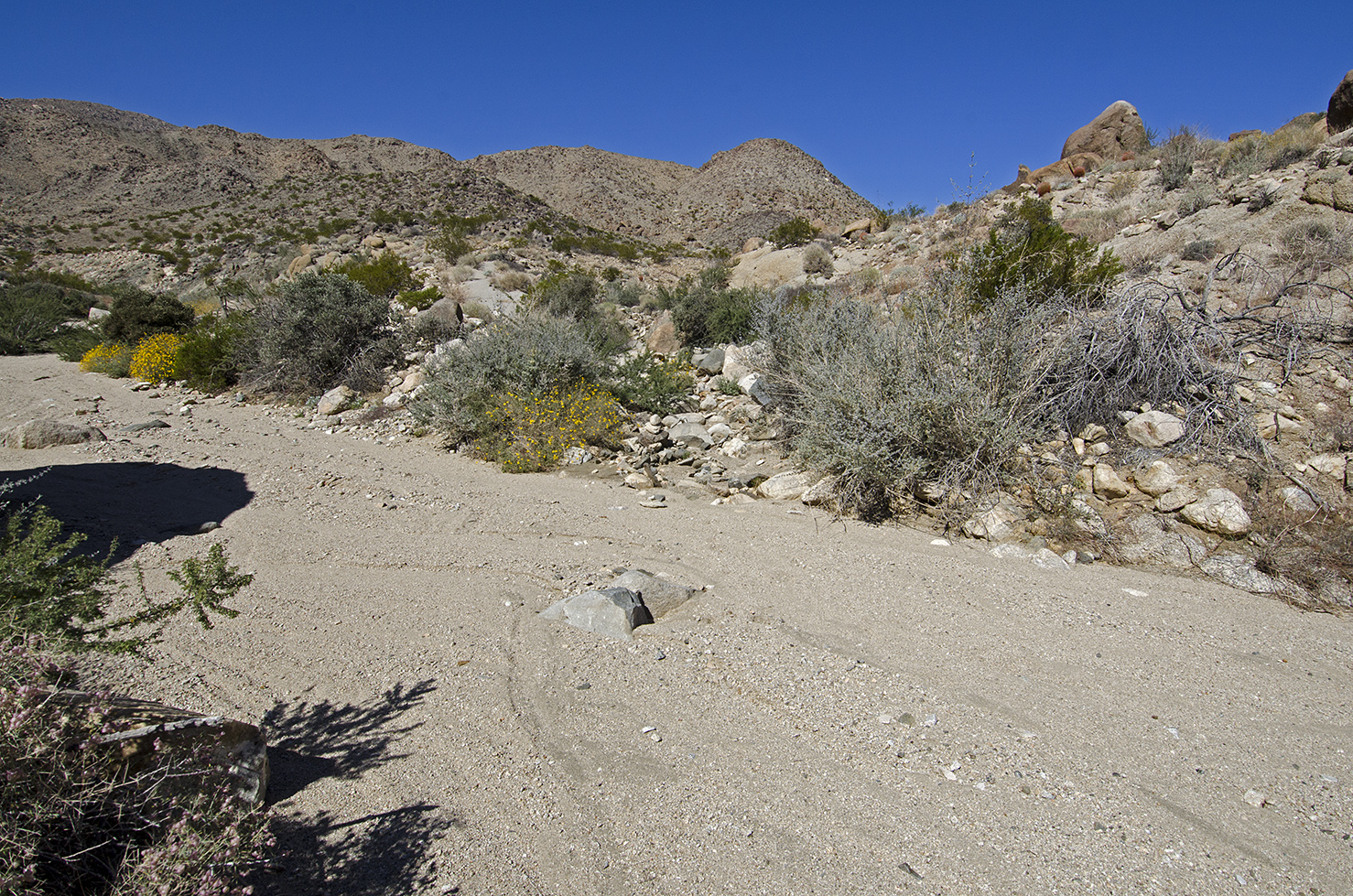 Here's where the road dips down into and crosses the wash, climbing back up again directly across.