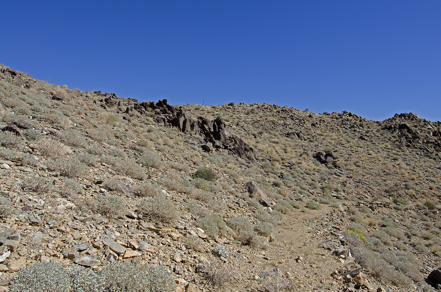 A short distance from the mine, I notice a fenced off shaft up on this rise and decide to investigate.