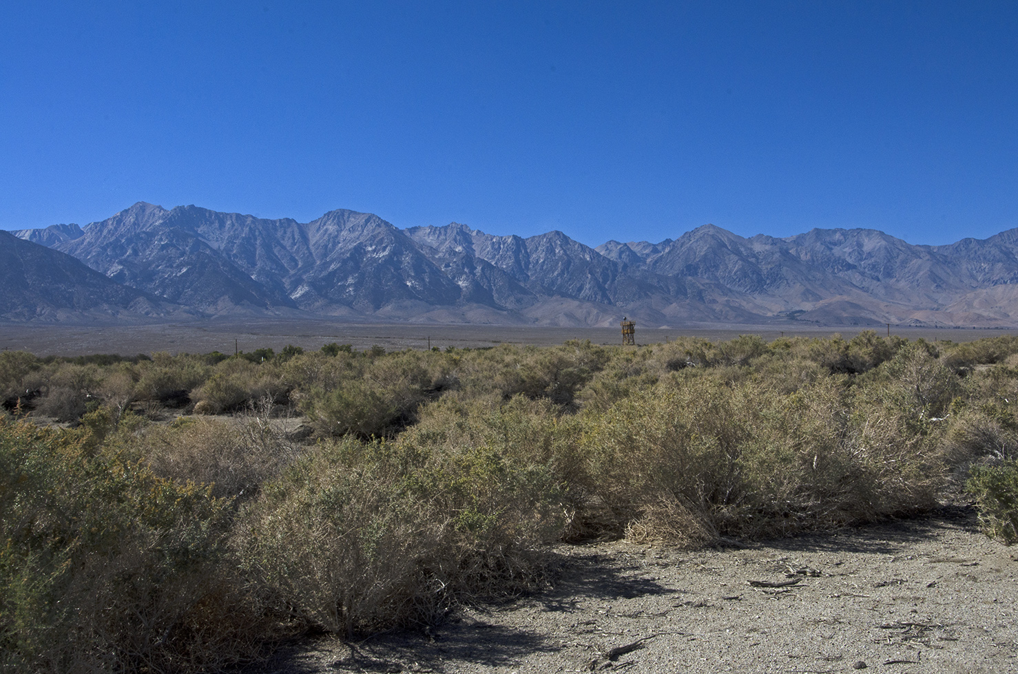 A reconstruction of one of the Manzanar Guard Towers in the distance.