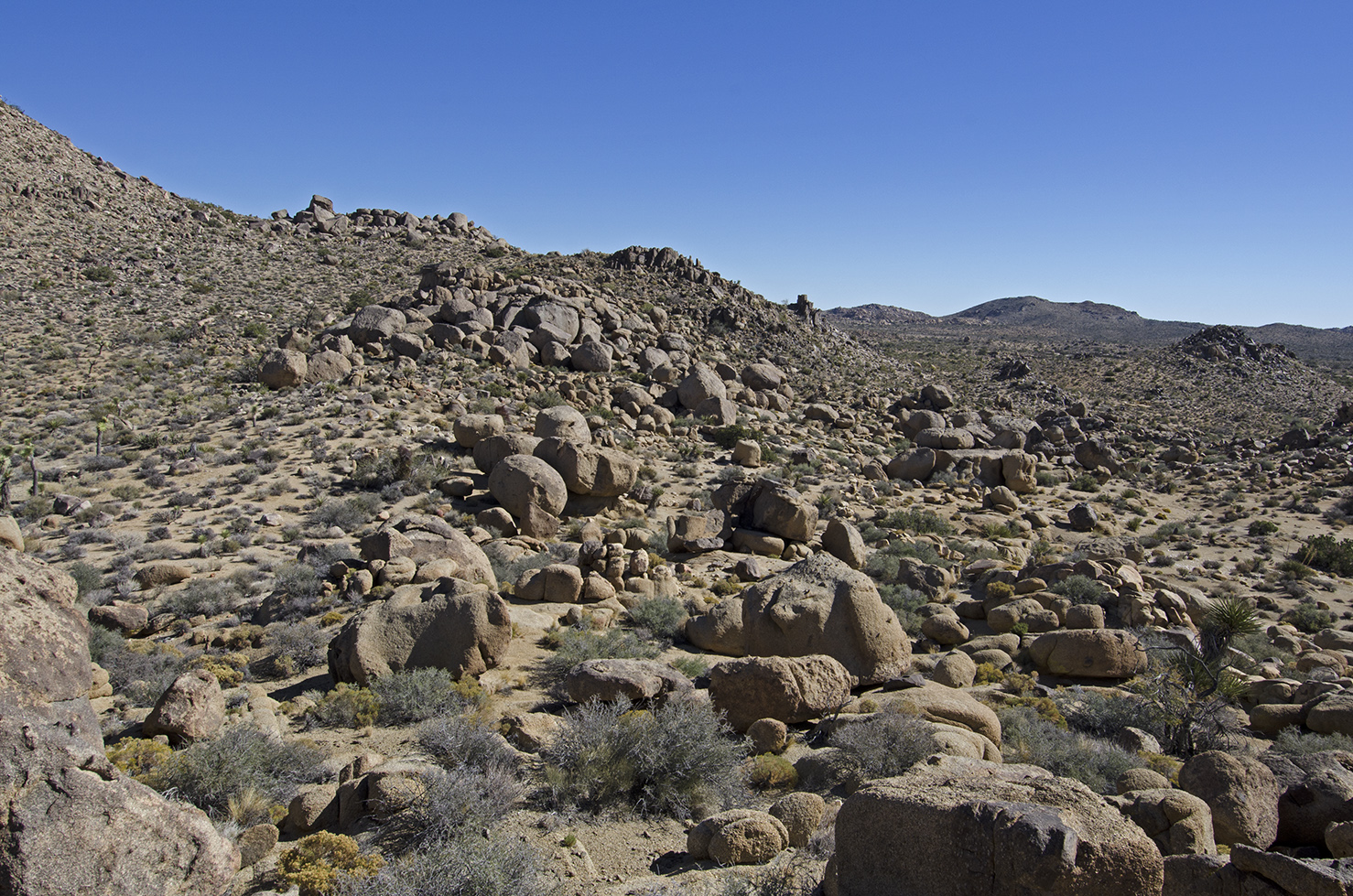 After climbing a little pile of boulders along the gps path, there are a lot of boulders still ahead.