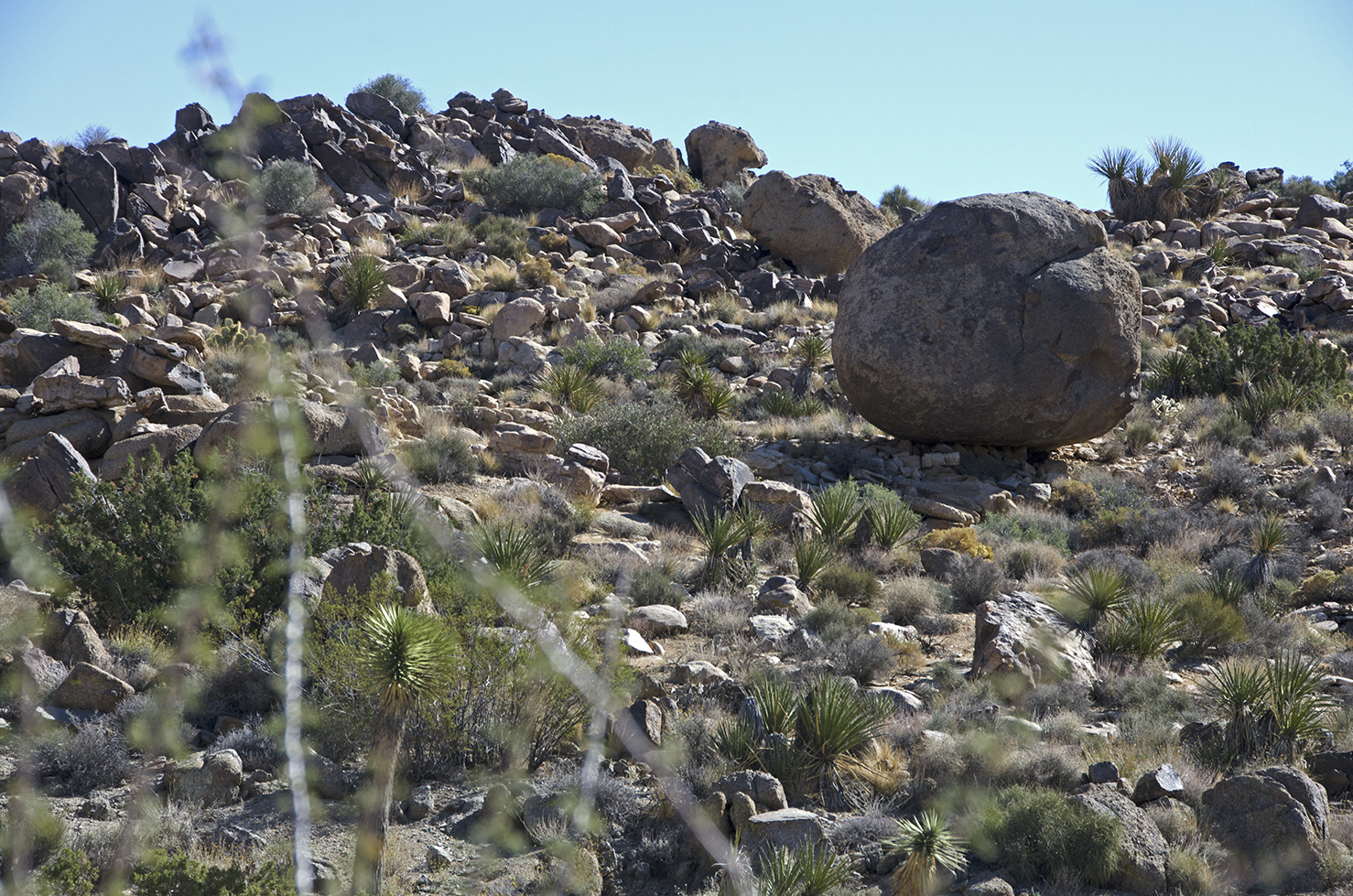 I wonder how strong of an earthquake would be required to get that boulder rolling.